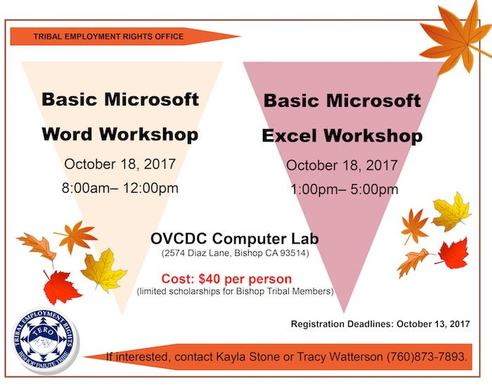 basic-microsoft-word-excel-oct