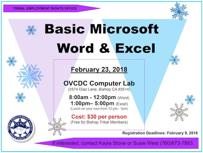 basic-microsoft-word-excel